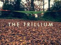 Tentsile Trillium Set Up